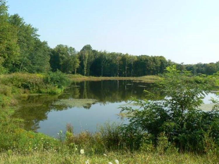 Lampson Reservoir Metropark