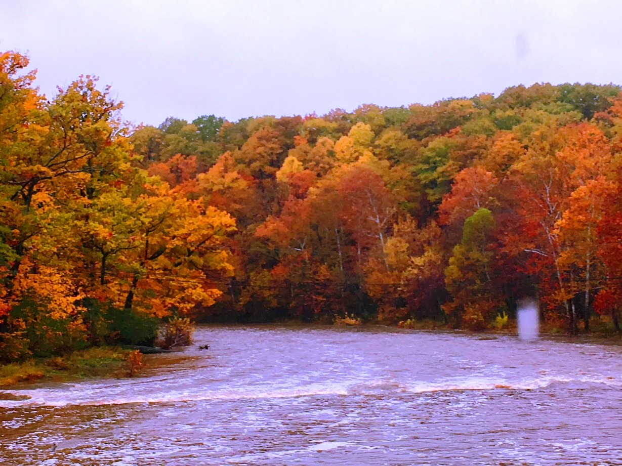 fall colors on trees along river